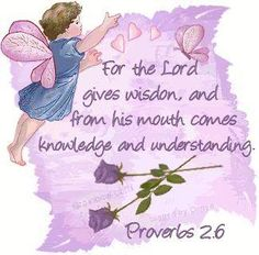 For the Lord gives wisdom, and from his mouth comes knowledge and understanding.  Proverbs 2:6