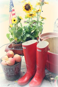 apples and wellies