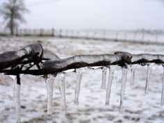 ice on barb wire