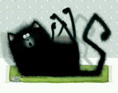 Rob Scotten.Splat the Cat