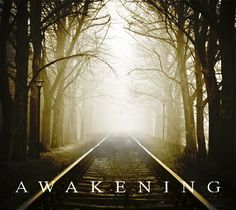 Awakening is a serene collection of Piano led tracks designed with ambiance, minimalism and spaciousness in mind. Blending the delicate colours of the Piano with contemporary ambient and sound design elements Awakening will perfectly compliment drama or documentary type productions. Sound Design, About Uk, Documentary, Awakening, Design Elements, Serenity, Piano, Compliments, Minimalism