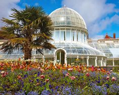 The Palm House, Belfast