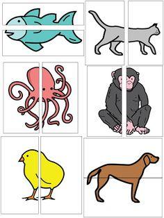 Autismus Arbeitsmaterial: Verbinden: Tiere Autism Activities, Montessori Activities, Preschool Worksheets, Toddler Activities, Tier Puzzle, Puzzles For Toddlers, Special Kids, Children With Autism, Teaching Materials