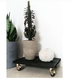 Easy idea for a diy plant shelf.