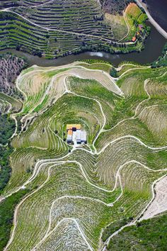 Ports of call: a #wine tour of the #Douro - The Guardian 21.05.2016 | Portugal's Douro region is famous for its port, but also produces fine, good-value reds and top nosh. Perfect, then, for thirsty foodies like our writer... Photo: Aerial view of vineyard terraces and the Douro river in the Alto Douro region.