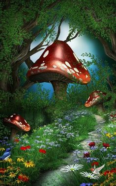Alice In Wonderland Photography Backdrops With Flowers Photo Studio Props Tairy Tale Theme Party Photo Background For Kids Birthday Room Decoration Magical Forest, Forest Fairy, Forest Garden, Woodland Fairy, Fantasy Forest, Fantasy World, Fantasy Kunst, Fantasy Art, Art Fantaisiste