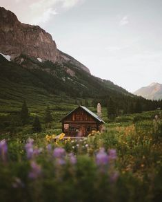 Cabin & mountains