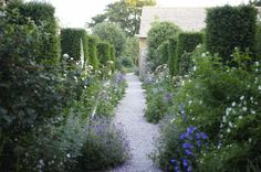Soft & sheltering path at Temple Guiting, a 15th C manor house in the Cotswolds, designed by Jinny Blom.