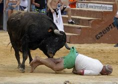 "A reveler gets gored by a bull during the ""Bous a la Mar"" festival in the eastern Spanish coastal town of Denia July 7, 2014. REUTERS/Heino Kalis"