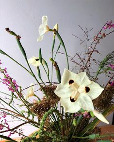 A wild flower in studio. Food for the soul on a quiet and gentle early morning. Wedding Flower Inspiration, Wedding Flowers, Early Morning, Dried Flowers, Dawn, Meditation, Dreams, Weddings, Studio