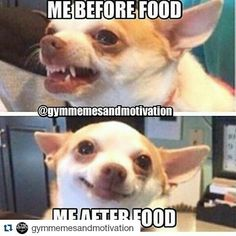 Diet and Fitness Humor, Diet Funny, Diet Funny Video, Fitness Jokes, Gym Humor, Gym Memes, Fitness Funny, Crossfit, Crossfitgirls, Fitchick, Fitgirls, Curvy Girls, Fit Women, Lunges, Squats, JK Commerce