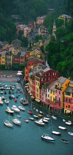 View From Castello Brown, Portofino, Italy
