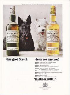 Black & White - One Good Scotch