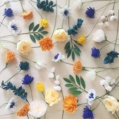 If you were to peek inside my brain right now it may likely look like a scattered lovely mess of flowers. by amaranthuspaperflora Love Flowers, Paper Flowers, Beautiful Flowers, Flower Collage, Flower Art, Flower Wallpaper, Pattern Wallpaper, Zentangle, Plants Are Friends