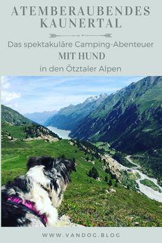 Lofoten, Mountains, Travel, Roadtrip, Wolf Tattoos, Inspiration, Offroad, Trips, Highlights