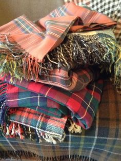 ⊰✿ tartan & plaid .. X ღɱɧღ || The Polohouse: Separated at Birth? Hmmm. You decide.