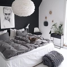 I don't know what I love more about this bedroom: the cozy knits, the gray decor, the plants, or the adorable, super blurry cat that photobombed the picture!