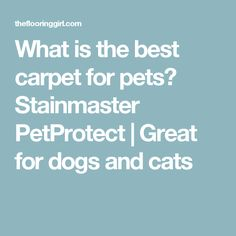 what is the best carpet for pets stainmaster petprotect