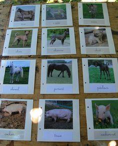 Merci qui ? MERCI MONTESSORI !: Cartes de nomenclature : les animaux de la ferme... en famille !