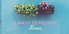 Feeling stressed already this school year? Here's 5 Ways to Relieve Stress