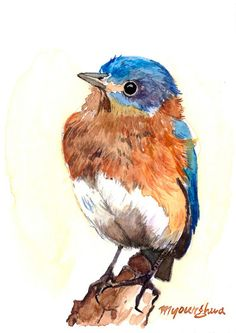 Art print 5 x 7 Bluebird in watercolor by annalee377 on Etsy, $9.00