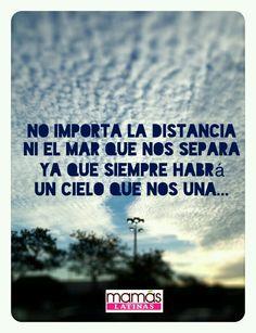 True♡