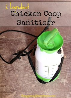 2 Ingredient Chicken Coop Sanitizer - Super easy way to keep your chickens safe…