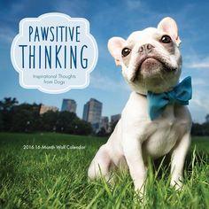 Pawsitive Thinking 2016 Wall Calendar