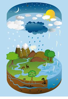 The Water Cycle on Behance Water Cycle Craft, Water Cycle For Kids, Water Cycle Project, Water Cycle Activities, Kindergarten Activities, Activities For Kids, Weather Activities, Water Cycle Poster, Cycle Drawing