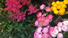 Assouplissant DIY fleurs