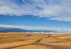 Rosehill Road // Rick Joyce, Kamloops, BC