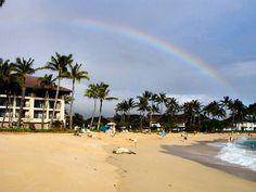 Rainbow and Hawaiian Monk Seal on Poipu Beach at the Sheraton Kauai Resort