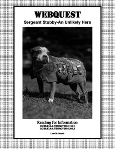 Webquest-Sergeant Stubby-An Unlikely Hero of World War 1 from Mrs. Mc's Shop on TeachersNotebook.com -  (9 pages)  - This is the amazing and charming true story of the rise of a stray dog and his adventures during World War 1.