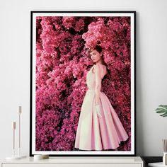 Buy gifts online from Hard to Find gifts Australia. Hard to Find homewares online & gifts for him, gifts for her, gifts for kids, unique gift ideas & presents Gifts For Kids, Gifts For Her, Buy Gifts Online, Gifts Australia, Homewares Online, Bougainvillea, Audrey Hepburn, Beautiful Images, Unique Gifts