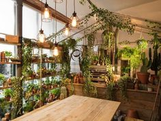 Airbnb and Pantone create magical Greenery 'Outside In' house in London Indoor Greenhouse, Indoor Garden, Indoor Plants, Greenhouse Ideas, Cheap Greenhouse, Underground Greenhouse, Homemade Greenhouse, Herb Garden, Garden Shop