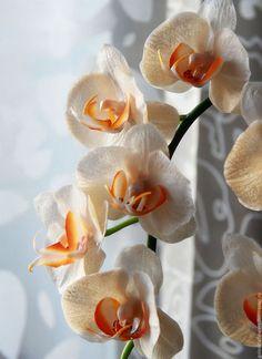 Clay Flowers, Sugar Flowers, Purple Flowers, Orchid Fertilizer, Lavender, Inspiration, Beautiful, Plants, Nature