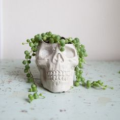 Skull Planter concrete plant pot Garden Home by brooklynglobal