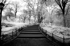 Entering Central Park New York  8x12 Fine Art by re4madoprints, $30.00
