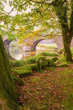Three Penny Bridge in Dartmoor National Park - Devon, England