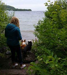 Pet Friendly Hotels In Door County Park Wisconsin