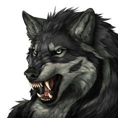Character name: Grigorii, age unknown, werewolf, non-gifted Anime Wolf, Wolf Photos, Wolf Pictures, Furry Wolf, Furry Art, Fantasy Wolf, Fantasy Art, Fantasy Creatures, Mythical Creatures