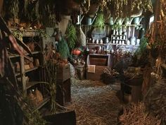 """Welcome The Magick voiceofnature: """"Witchy interior inspiration """" Witch Cottage, Witch House, Wicca, Magick, Witchcraft, Buddha Kunst, Yoga Kunst, Deco Nature, Witch Aesthetic"""