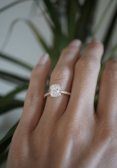 Cute Engagement Rings, Engagement Rings White Gold, Most Beautiful Engagement Rings, Cushion Cut Engagement Rings, Different Engagement Rings, Radiant Cut Engagement Rings, Unique Diamond Engagement Rings, White Gold Wedding Rings, Engagement Ring Settings