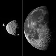 This illustration compares the relative sizes of Mars' moons, as seen from the surface of Mars, with the size of our moon, as seen from the Earth's surface. Image credit: NASA/JPL-Caltech/Malin Space Science Systems/Texas A&M Univ.