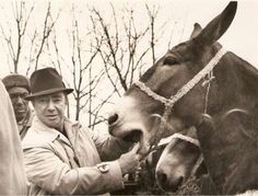 The Reese family moved to Gallatin Tennessee in 1892 and began selling mules in the 1920's.