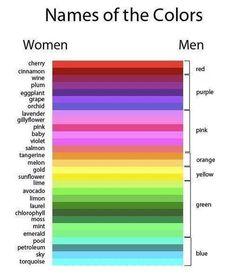 het kleurenpalet m/v