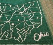 Ohio farms...corn maze - If your going to mono-crop....at least do it with style!
