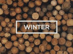 Winter | Typography
