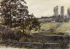 Uitsig Paddocks (Charcoal) - Charcoal and ochre on paper. 175 x 245 mm.  I used to talk walks between the wine farms. This was a nice view looking across the valley of Constantia Uitsig. I did an oil painting of this view afterwards.