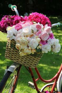 Bike basket bouquet I plan on riding to the ceremony on my old fashioned bike :) My Flower, Fresh Flowers, Beautiful Flowers, Romantic Flowers, Deco Floral, Floral Design, Colorful Roses, Spring Blooms, Spring Flowers